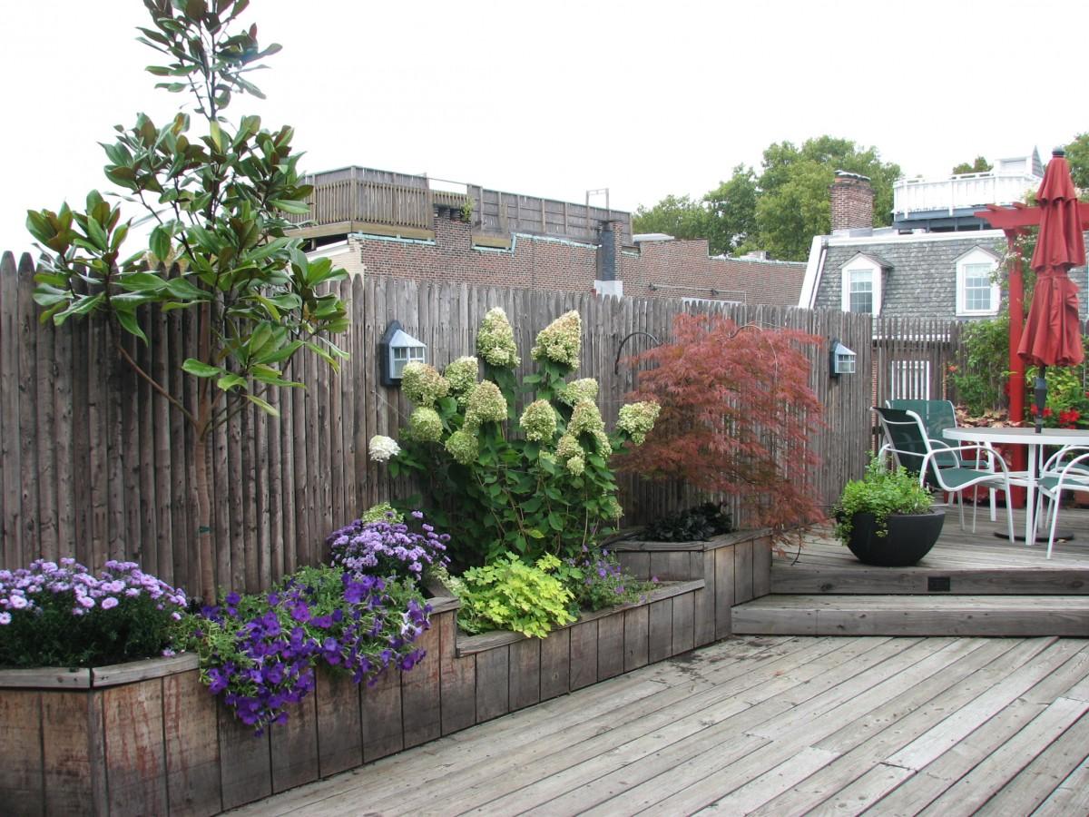 Roof terrace gardens city plants llc for Terrace 33 city garden